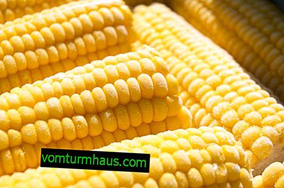 Hur man frysar majs för vintern hemma