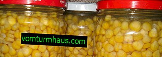 Hvordan man pickle vintermajs i krukker