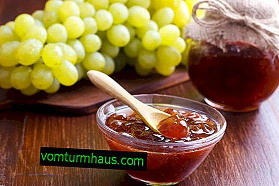 Kış için çekirdeksiz üzüm için en iyi tarifler
