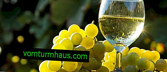 Jak vyrobit víno z bílých hroznů