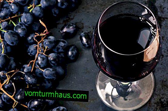 Výroba černého hroznového vína doma
