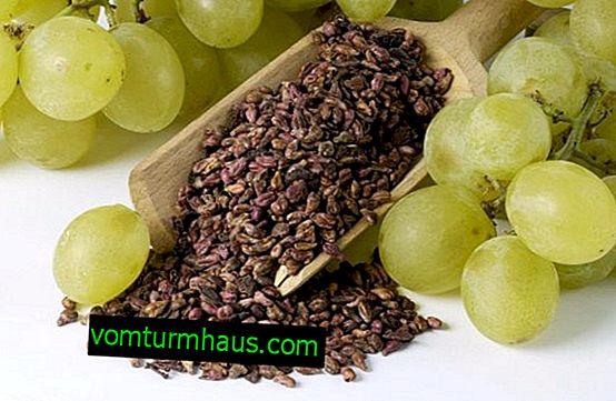 Puis-je utiliser des raisins avec des graines?