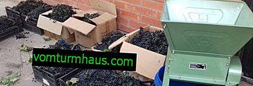 Broyeur de bricolage (écrasement) pour les raisins