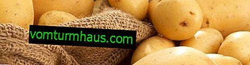 Značajke zamrzavanja i daljnje pripreme krumpira