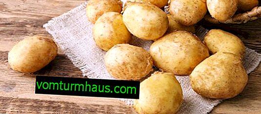 Kartoffel Janka: egenskaber og funktioner ved dyrkning af sorter