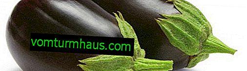 Funktioner i auberginesorten Svart stilig