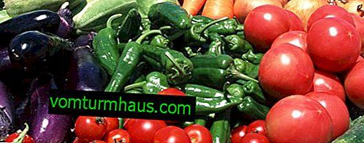 Aký je najlepší spôsob pestovania papriky v skleníku?