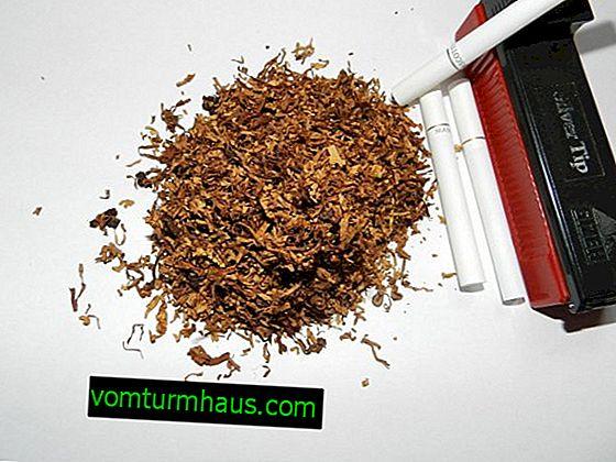 Tobak: fordel eller skade?