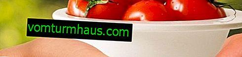 Tomates Valentine: descripción, cultivo, técnica agrícola