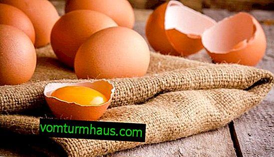 ¿Es posible beber huevos de gallina crudos: beneficios y daños, recomendaciones de uso?