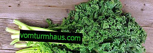 Kålkål: beskrivning och funktioner för växande sorter