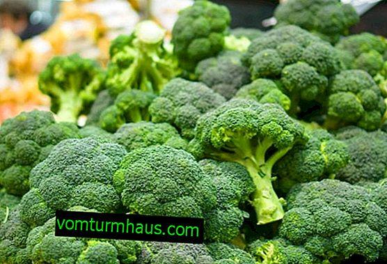 Caractéristiques de la culture du chou-brocoli