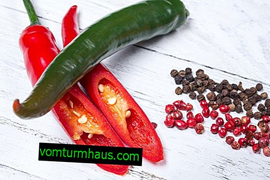 Fördelarna och skadorna av paprika: läkande egenskaper och egenskaper