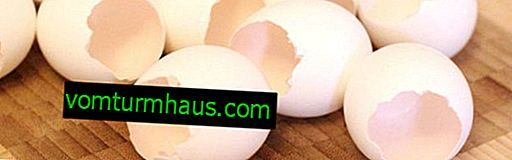 Gusci d'uovo: benefici e rischi per la salute umana