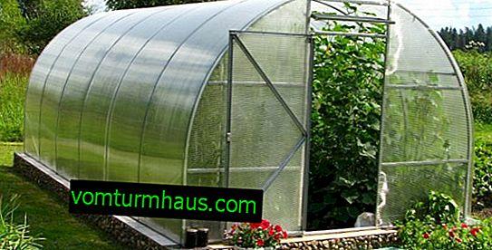 Optimální polykarbonátové skleníky