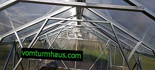 Hur gör jag ett växthus från en profil med dina egna händer?