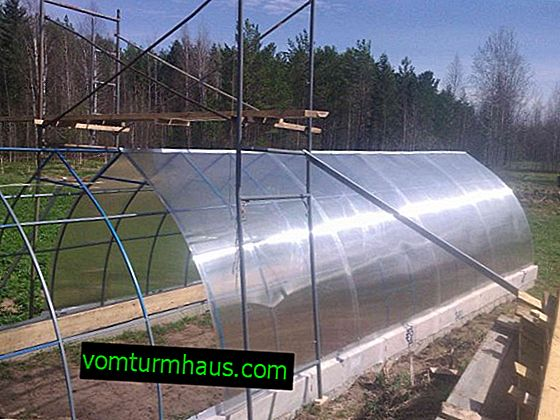 Choosing a place to install a greenhouse on the site