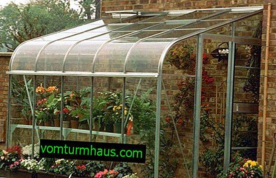 Ako postaviť polykarbonátový stenový skleník?