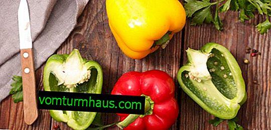Bulharské pepřové solení: nejlepší recepty s postupným vařením