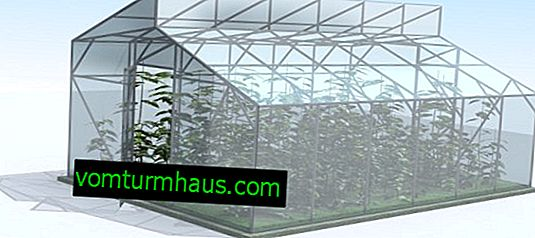 Kako zgraditi rastlinjak Mittlider, ki ga naredite sami