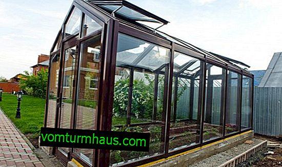Odrody a vlastnosti sklenených skleníkov, ich vlastná výroba