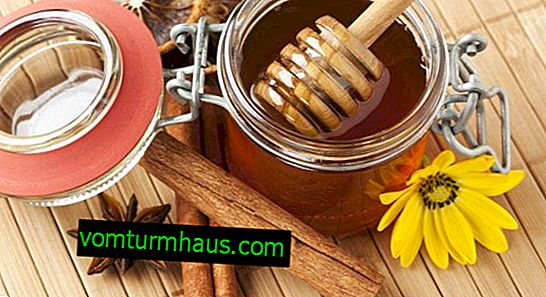 Properties and features of the use of cinnamon with honey