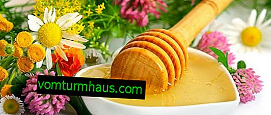 Forbs honey: beneficial properties and contraindications