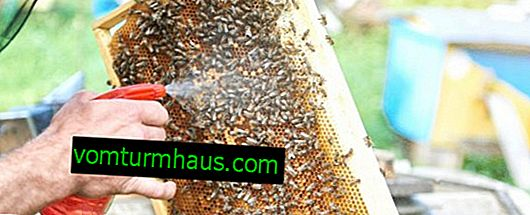 "How to process bees ""Bipin"""