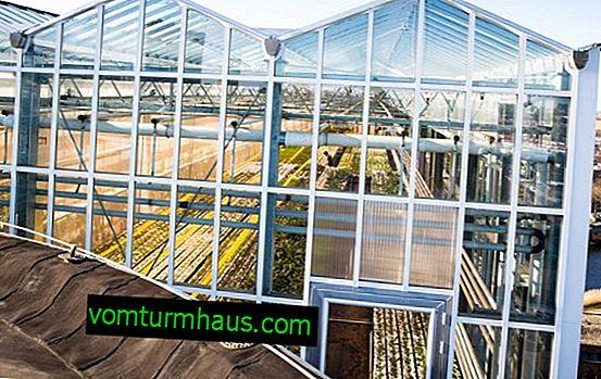Hur installerar jag ett växthus på taket i ett garage eller hus?