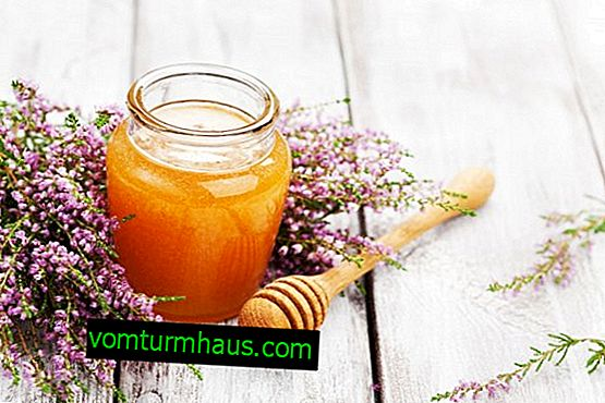 Heather honey: properties and features of use
