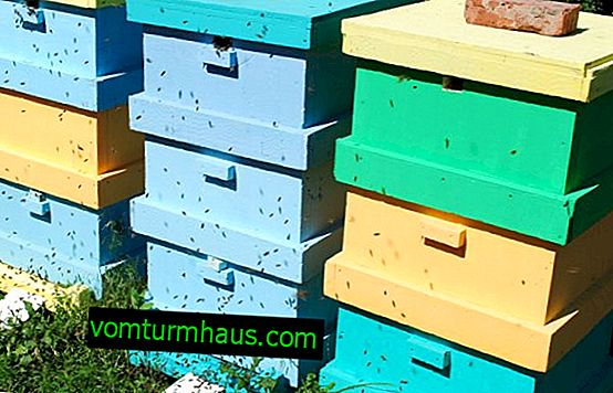 How to make polystyrene beehives with your own hands?