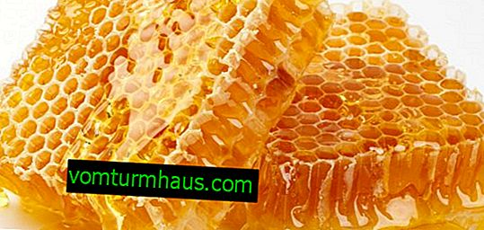 What is the diastase number of honey, and how to determine it?