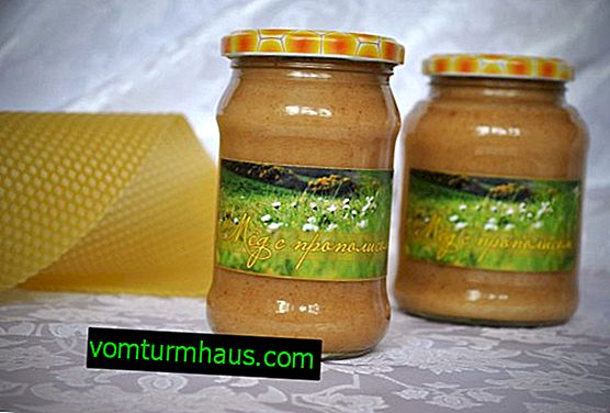 Honey with propolis: description, benefits and harms, especially consumption