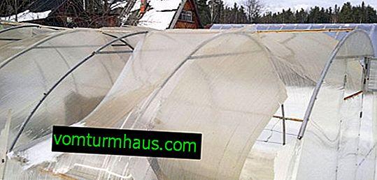 Réparation de serres en polycarbonate à faire soi-même