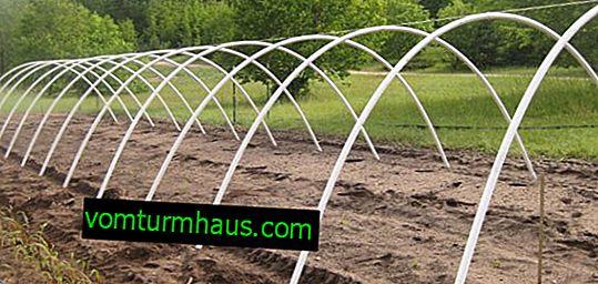 Hur man skapar växthus från valv med täckmaterial med egna händer