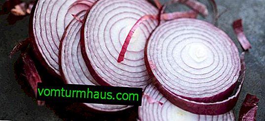 Cipolla rossa: beneficio e danno, a differenza del solito