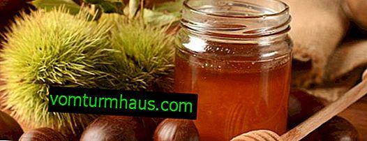 Miód z kasztanów: szczególnie korzyści, szkody i przeciwwskazania