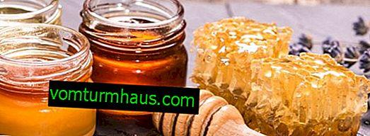 Какъв вид мед е най-вкусен и здравословен?