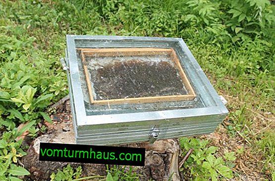 Funkcie dizajnu voskových rafinérií doma