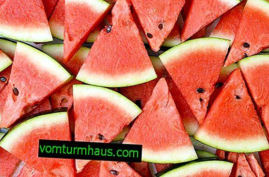 Normer til indtagelse af vandmelon uden sundhedsskader