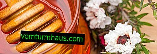 Vlastnosti a užitočné vlastnosti medu manuka