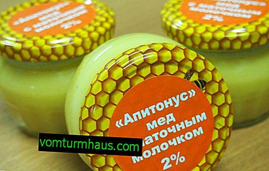 Honey Apitonus: propriétés bénéfiques et règles de base d'utilisation