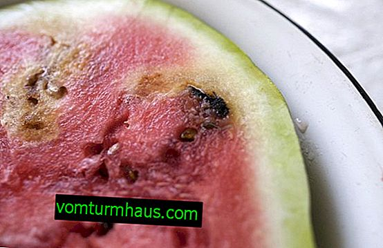How to understand that a watermelon has soured, and is it possible to eat