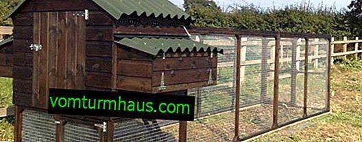 Comment construire un poulailler avec vos propres mains pour 10 poules
