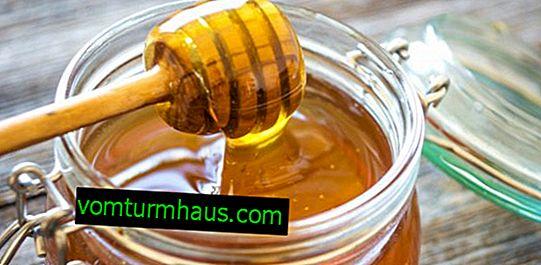 ¿Cómo determinar el azúcar en la miel en casa?