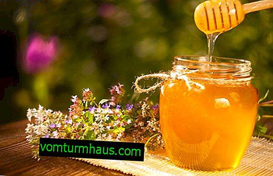 อาจน้ำผึ้ง: จากสิ่งที่เมื่อพวกเขาเก็บเกี่ยวมันมีประโยชน์อย่างไรและจะแยกแยะปลอมได้อย่างไร