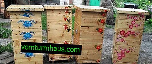 Wie man einen Narrow-Hive zum Selbermachen bringt