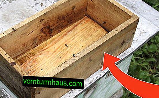Vlastnosti a metody výroby krmítka pro včely