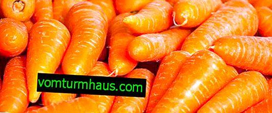 Caractéristiques des variétés de carottes Karotel