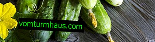 How to get rid of white plaque on cucumbers?